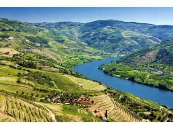 A vendre hôtel 42 chambres et vignoble Portugal