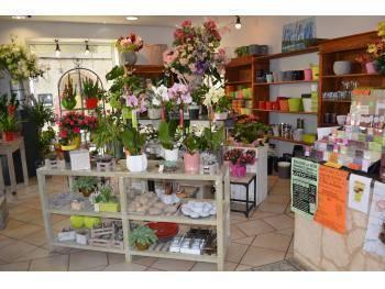 vente commerce cadeaux fleurs 31 haute garonne 120000. Black Bedroom Furniture Sets. Home Design Ideas